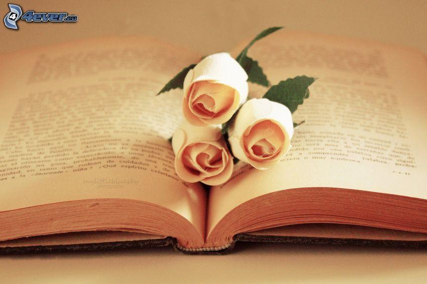 książka, różowe róże