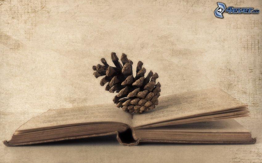 książka, szyszka