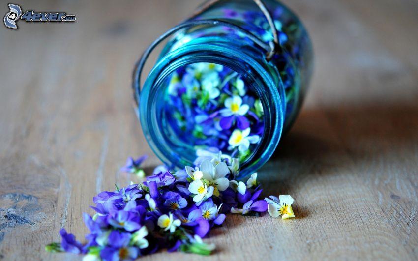 kwiaty, szklanka