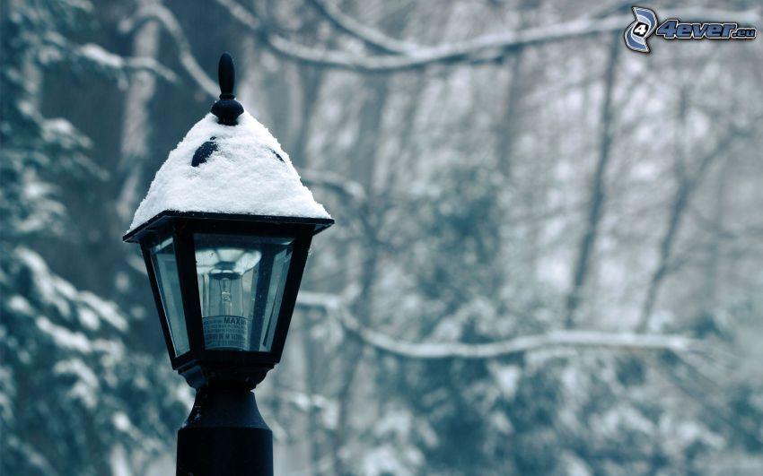 lampa, śnieg