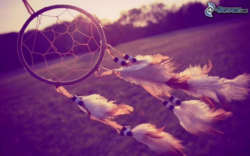łapacz snów, wiatr, piórka