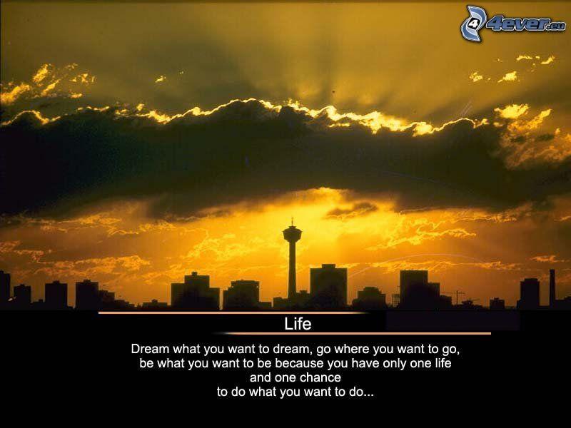 life, życie, miasto