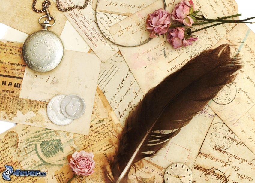 listy, piórko, różowe róże, zabytkowy zegarek