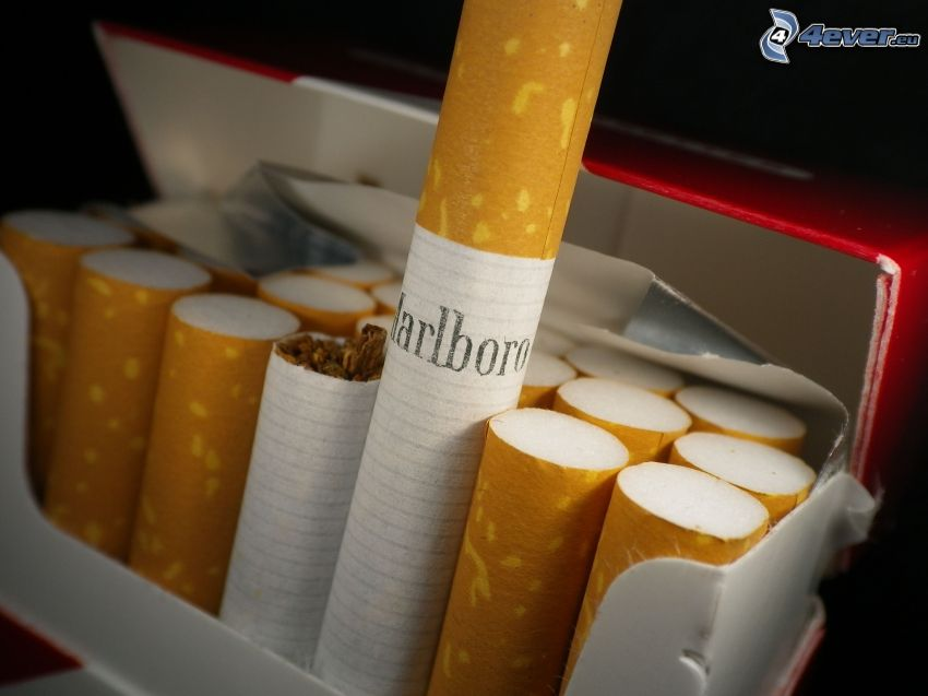 Marlboro, papierosy