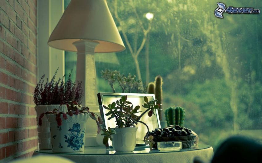 nocna szafka, lampa, kwiaty