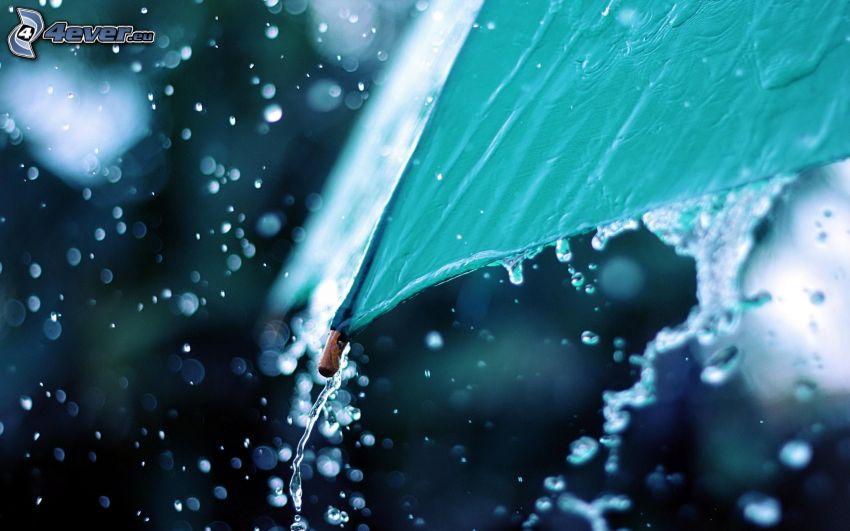 parasol, deszcz