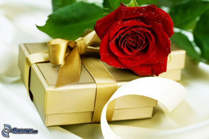 prezent, czerwona róża, wstążka