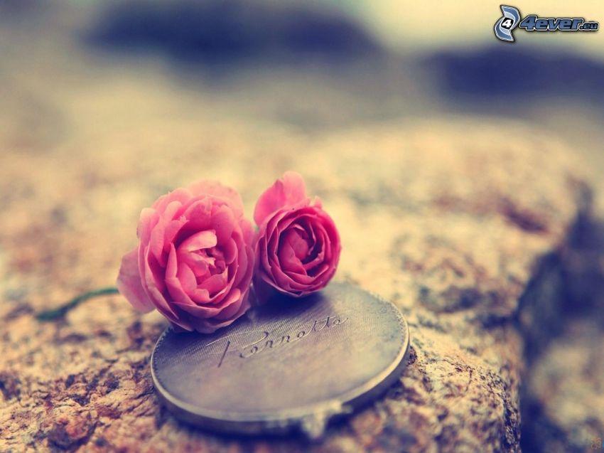 różowe róże, lustro, skała