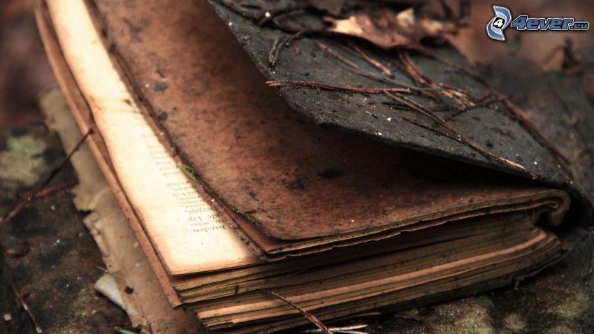 stara książka, gałązka