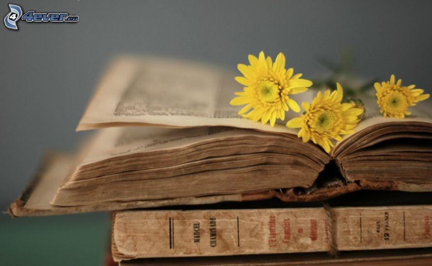 stare książki, żółte kwiaty