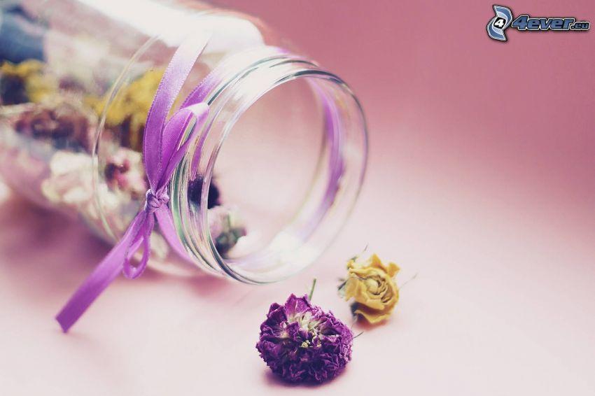 suszone kwiaty, szklanka