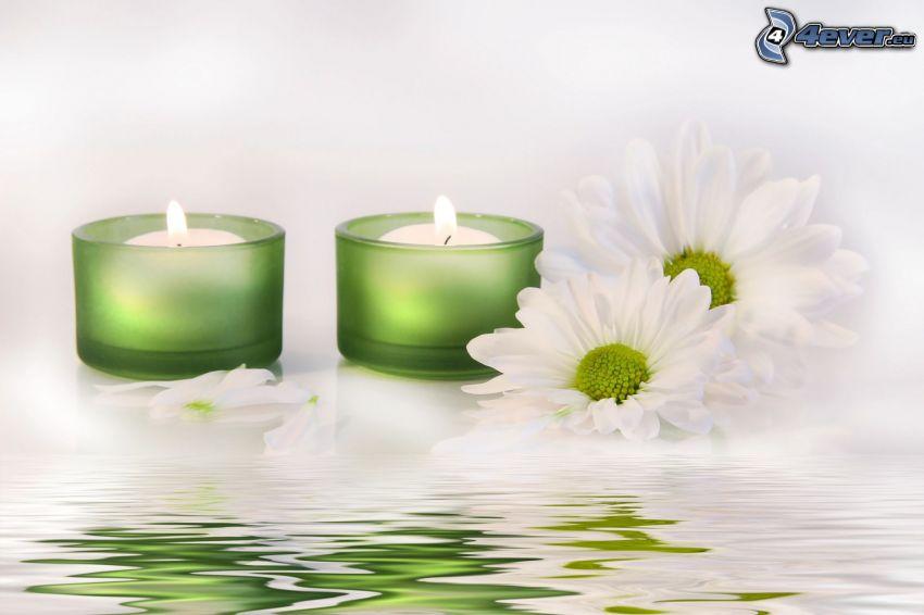 Świeczki, białe kwiaty, powierzchnia wody