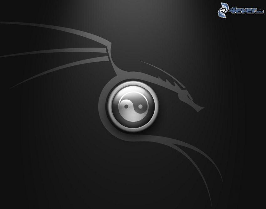 yin yang, smok rysunkowy