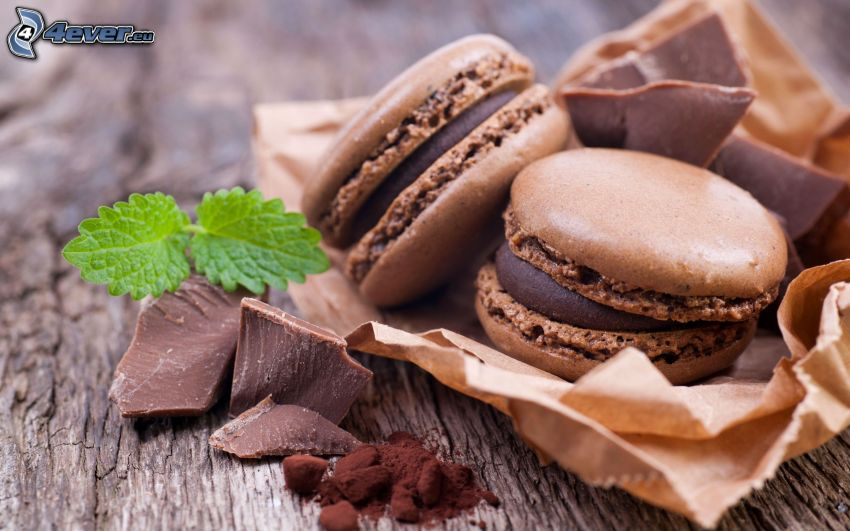 ciasteczka, czekolada, kakao, liście mięty