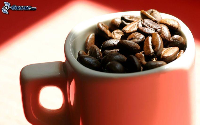 filiżanka, ziarna kawy