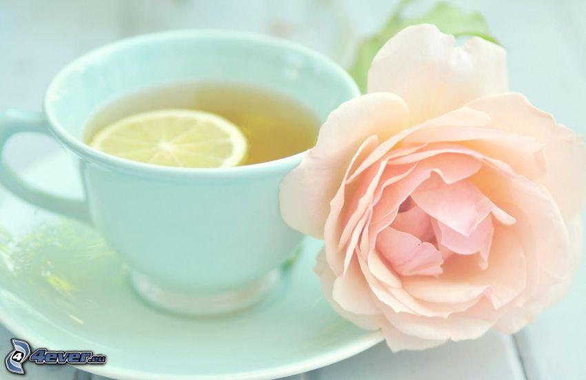 filiżanka herbaty, różowa róża, plasterek cytryny