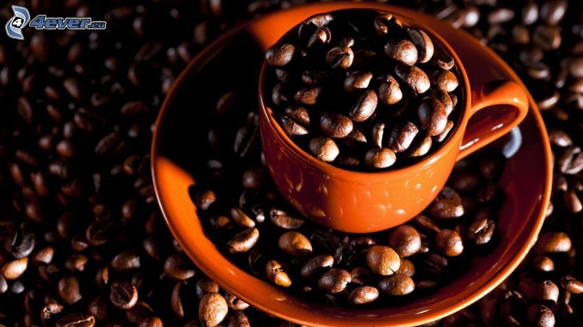 filiżanka kawy, ziarna kawy
