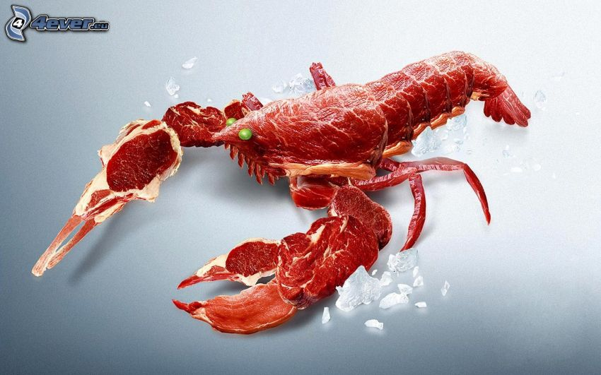 homar, mięso