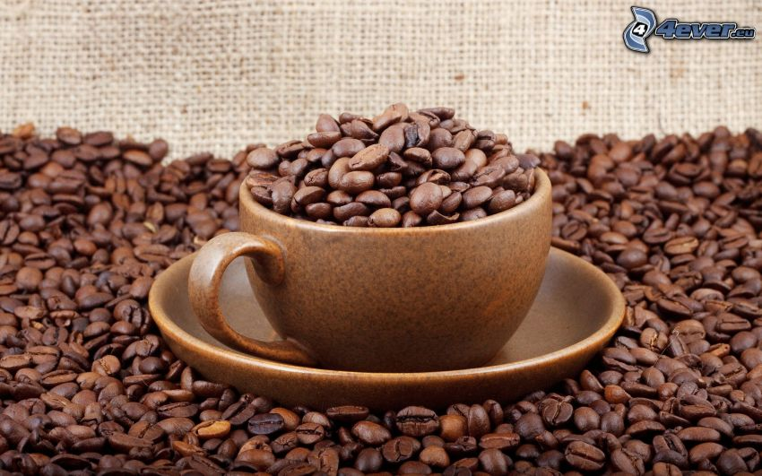 kubek, ziarna kawy, kawa