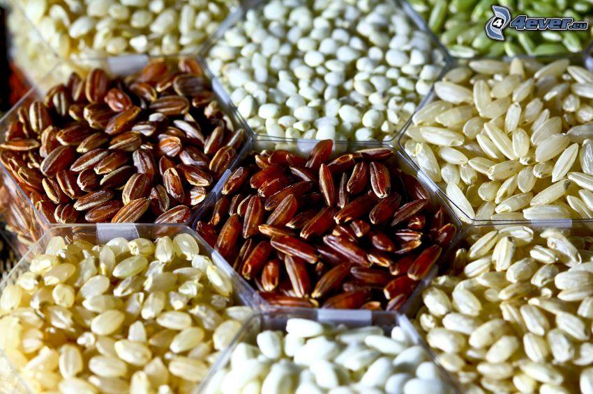 ryż, rośliny strączkowe