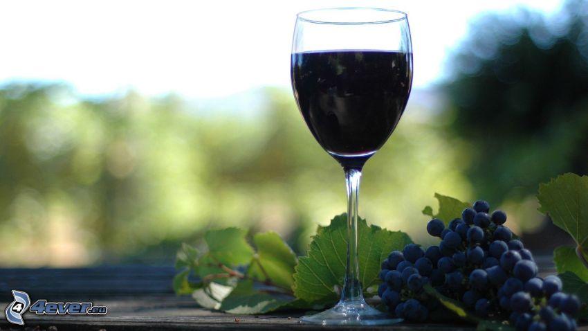 wino, winogrona, szklanka