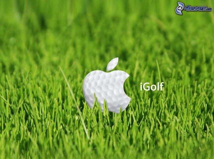 Apple, piłka golfowa, trawa