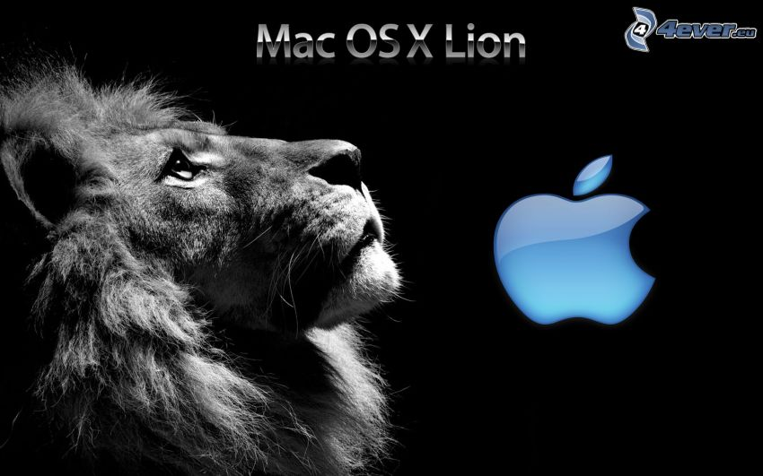 Mac OS X Lion, lew, Apple