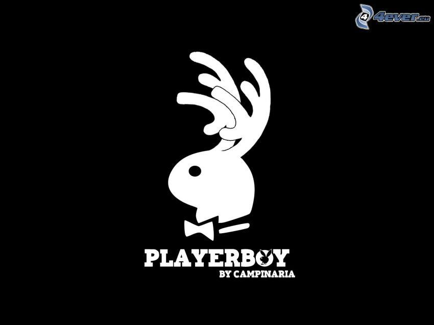 Playerboy