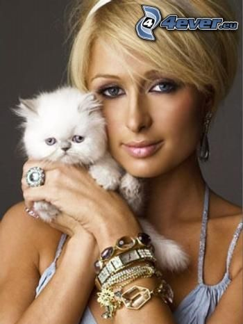 Paris Hilton, Mały biały kotek