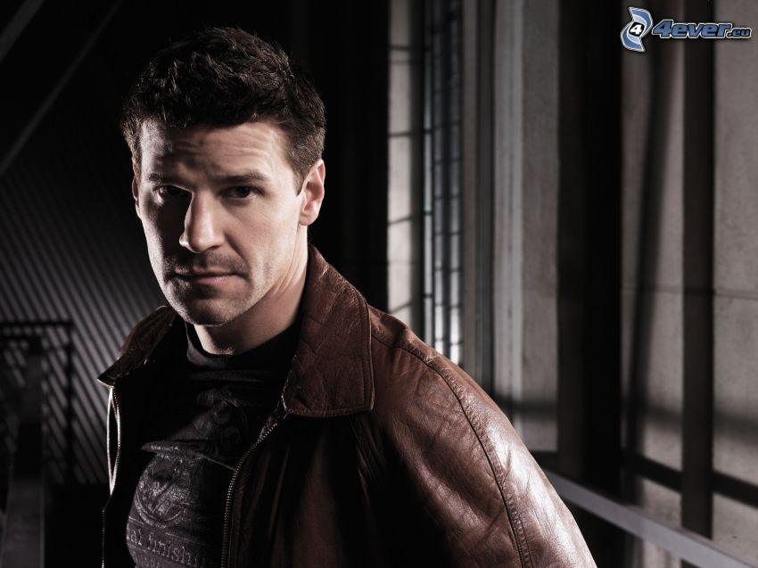 Seeley Booth, Kości, David Boreanaz