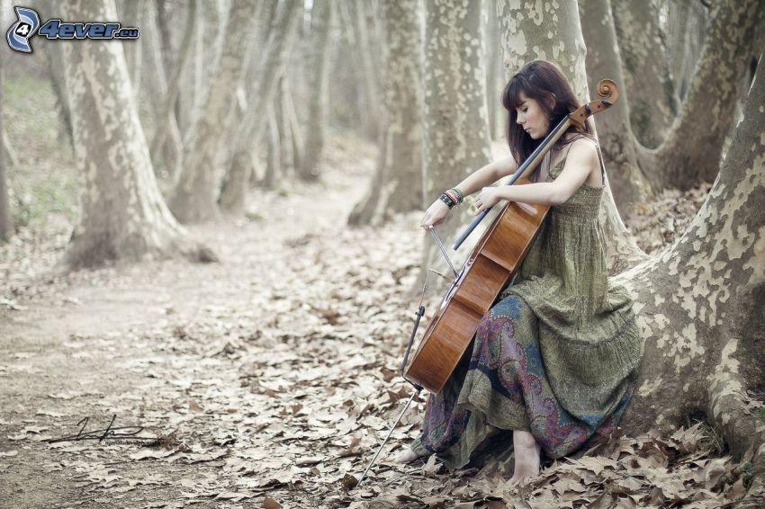 dziewczyna grająca na wiolonczeli, las