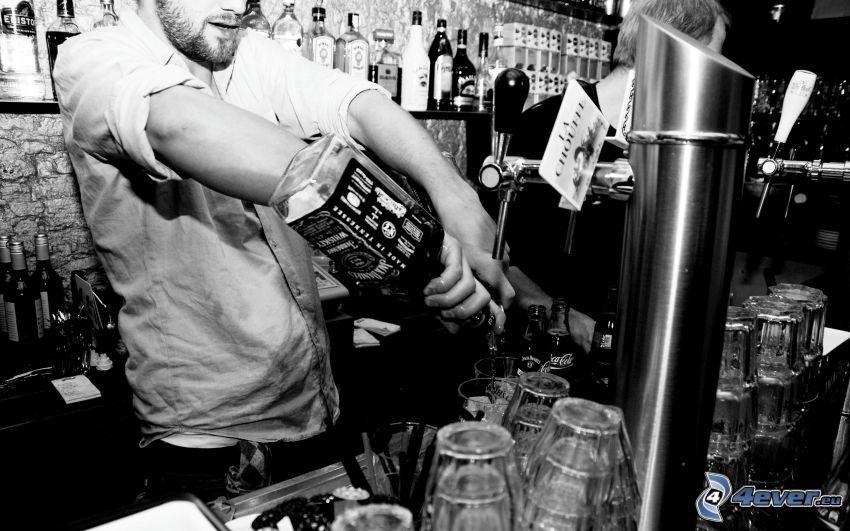 bar, barman, whisky, Jack Daniel's