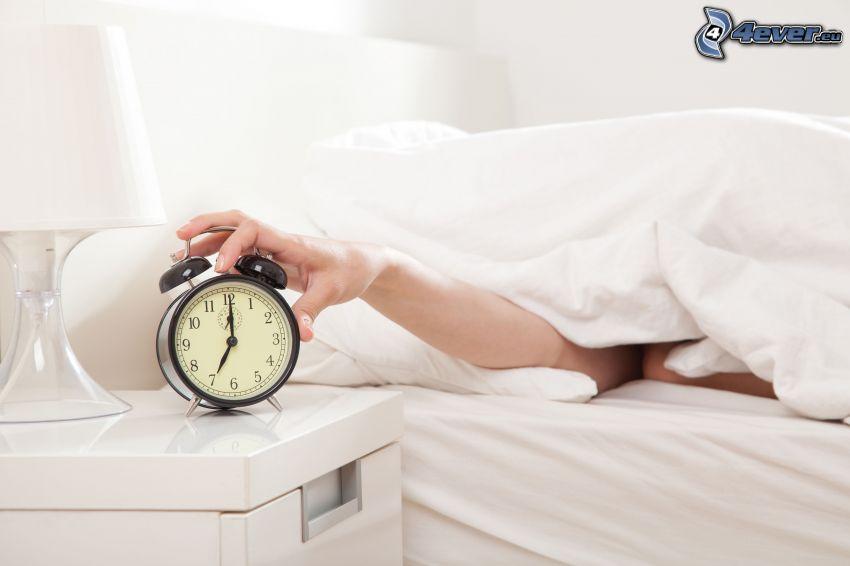 budzik, ręka, spanie, kołdra