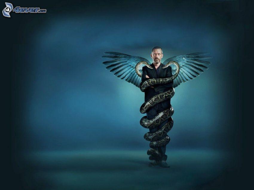 Dr. House, skrzydła, węże