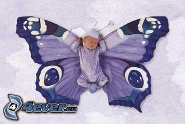 dziecko, motyl, kostium