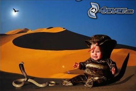 dziecko, wąż, orzeł, pustynia, słońce, piasek
