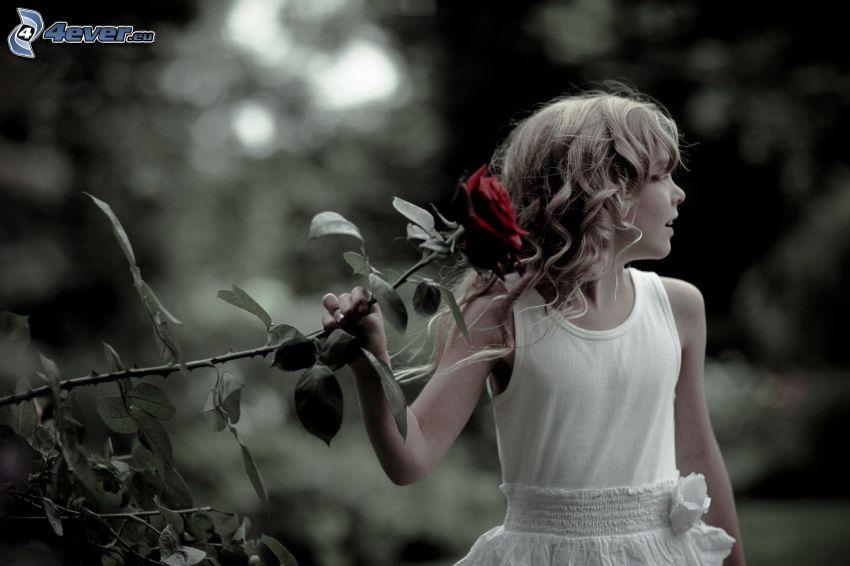 dziewczynka, czerwona róża