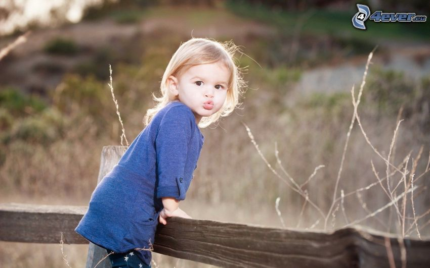 dziewczynka, drewniany płot