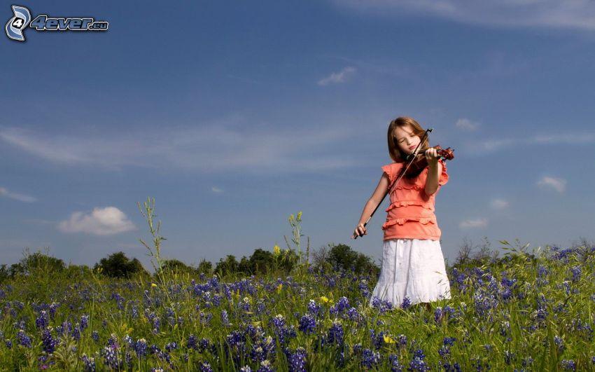 dziewczynka, wiolonczela, fioletowe kwiaty