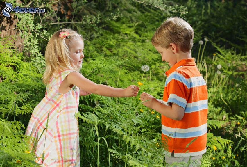 dziewczynka i chłopczyk, kwiat, zieleń