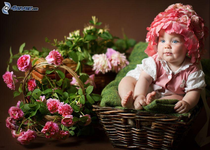 niemowlak, koszyk, różowe kwiaty