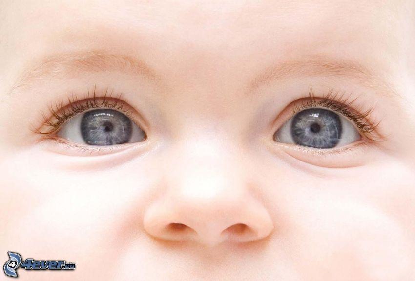 niemowlaki, twarz, oczy, nos