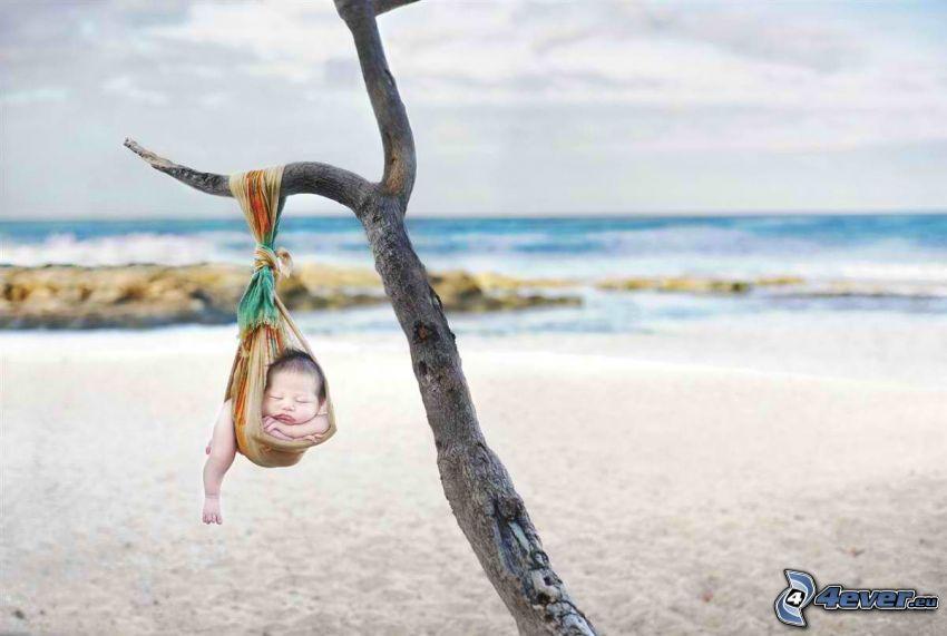 śpiące dziecko, dziecko na plaży, wyschnięte drzewo, szalik