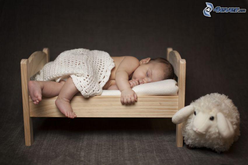 śpiące dziecko, owieczka