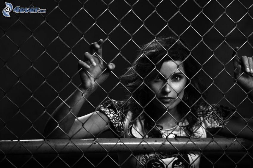Nelly Furtado, ogrodzenie z drutu