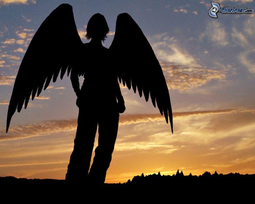 sylwetka kobiety, przy zachodzie słońca, kobieta ze skrzydłami, niebo