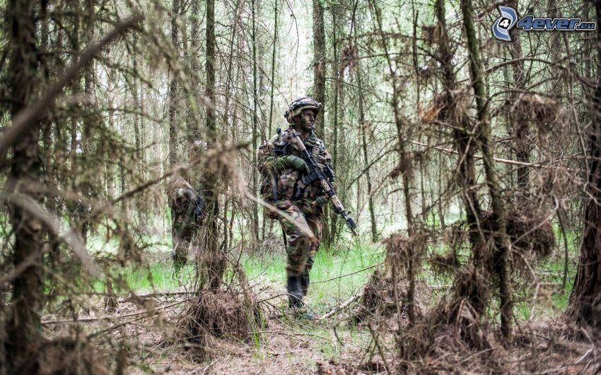 żołnierz, las
