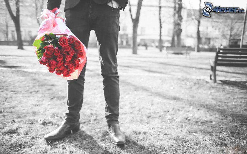 bukiet róż, mężczyzna w garniturze, park, czarno-białe zdjęcie