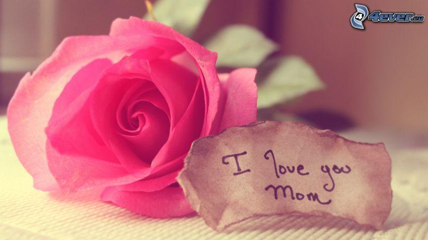 I love you, mama, różowa róża