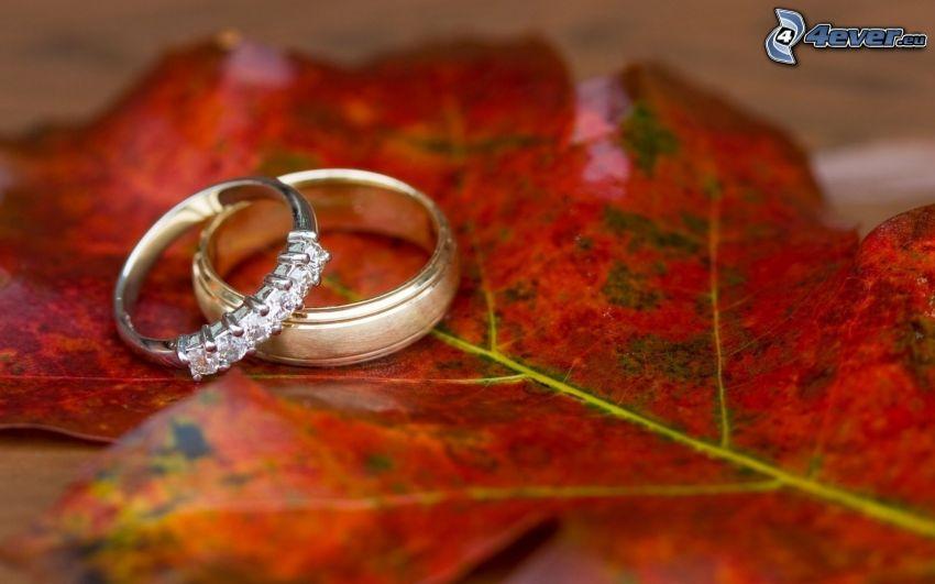 pierścionki, czerwony liść